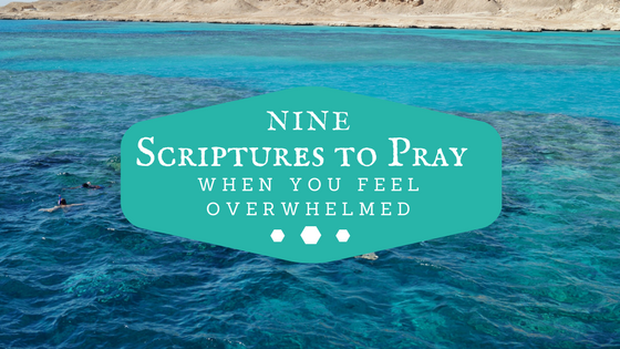 9 Scriptures To Pray When You Feel Overwhelmed - Dr  Dalton